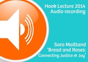 Audio icon Sara copy