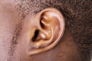 Ear_shutterstock_134142941